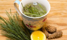 Çam Yaprağı Faydaları Çay Yaprağı Çayı