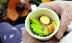 Öksürük ve Grip İçin Bitki Çayı